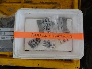 Hairballs & Furballs