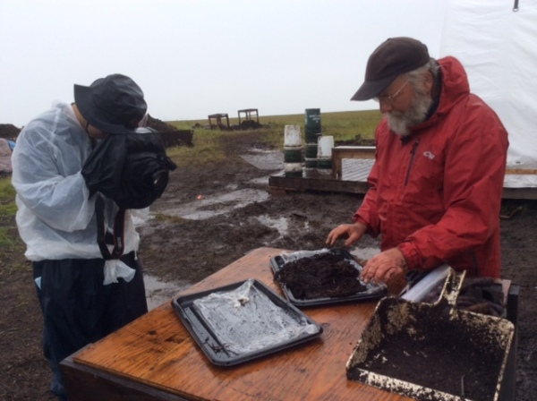 Arctic Archaeology in Action