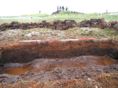 Our hole and peat section before sampling